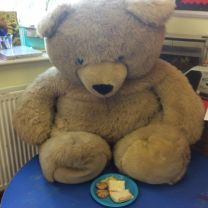 Teddy Bears picnic.  (morning class)